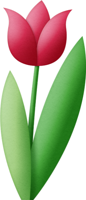 Tulipe Rouge Element Scrapbooking Flower Tulip Png