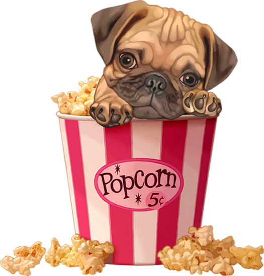 Popcorn Et Petit Chien Png Transparent Dessin Couleur