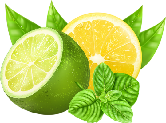 citron vert citron jaune tube lemon lime png. Black Bedroom Furniture Sets. Home Design Ideas