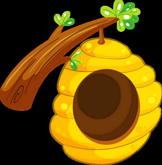Miel page 3 - Dessin de ruche d abeille ...