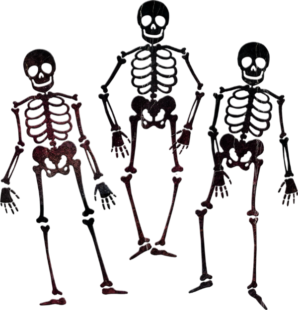 Squelettes Png Dessin Tube Halloween Skeletons Png