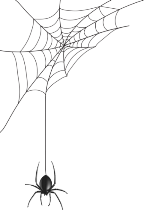 Toile D Araignée Png Tube Halloween Spider Web Clipart