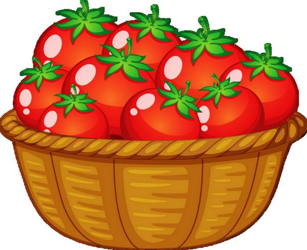 Tomates - Dessin de tomate ...