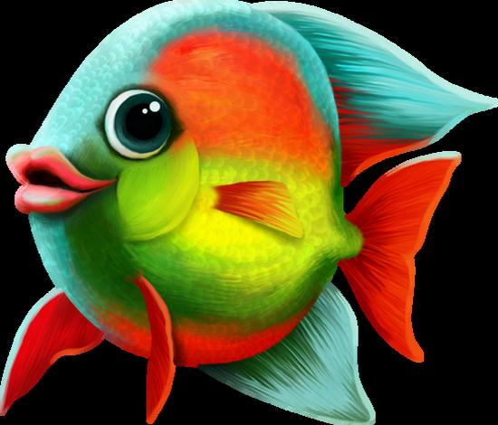 Tube Png Poisson Dessin Fish Clipart Sea Pescado Png