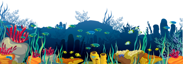 Fond Marin Png Poissons Dessin Seabed Png Drawing
