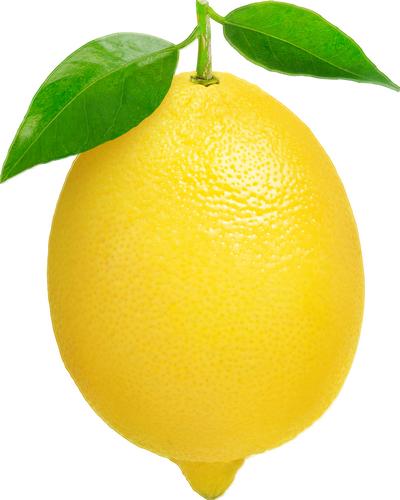 citron tube png lemon zitrone png limon lemon clip art fruit lemon clip art png
