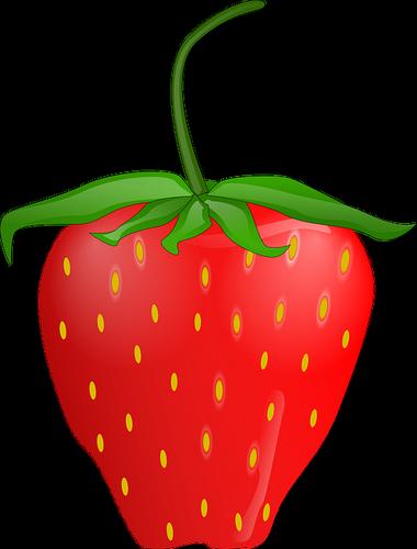 Fraise dessin - Couleur fraise ecrasee ...