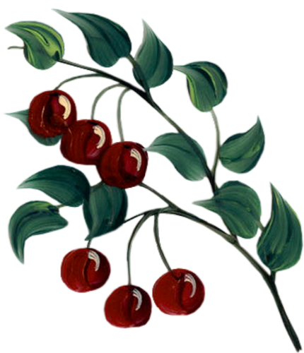 Branche De Cerisier Joli Dessin