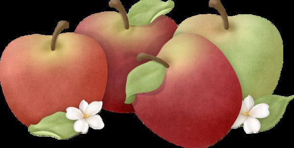 Pommes dessin - Pommes dessin ...