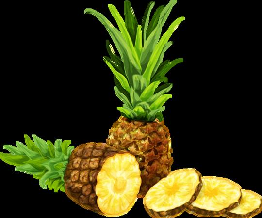 Ananas Dessin