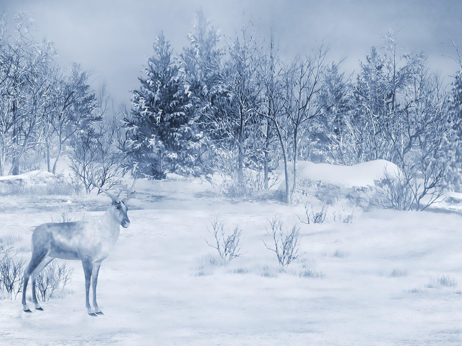 Scrap no l hiver fond paysage enneig winter scrap - Paysage enneige dessin ...